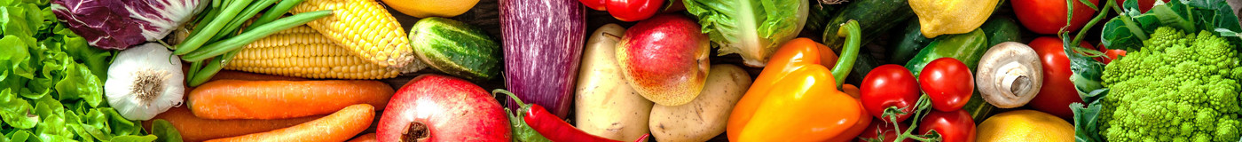fresh vegetables_banner